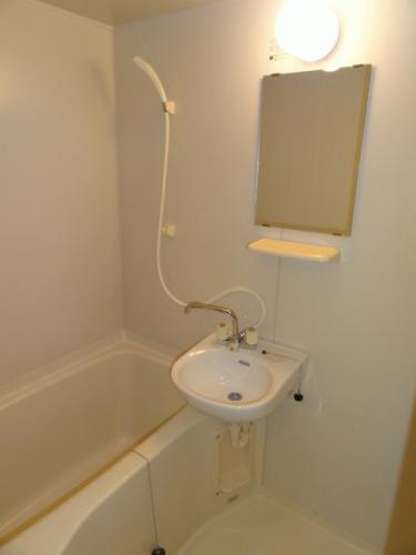 清潔感あるお風呂。小さな洗面台付き。