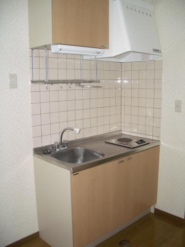 キッチンスペースはこんな感じです。電気コンロ付き!